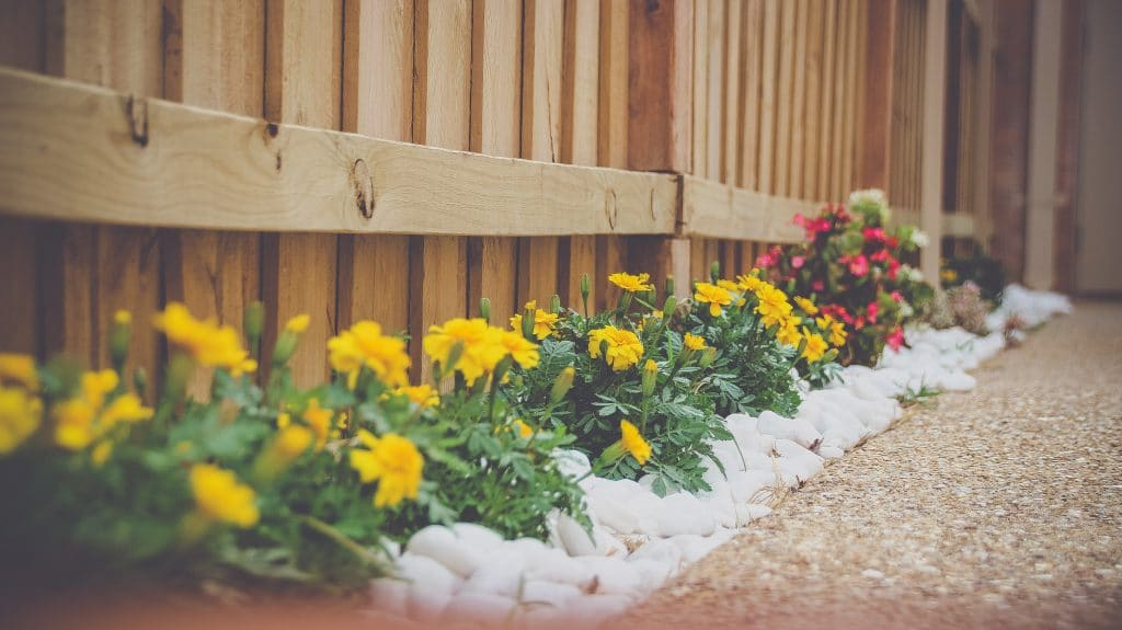 Insurance by Castle - How Low Maintenance Landscaping Ideas Leads to a More Profitable Rental