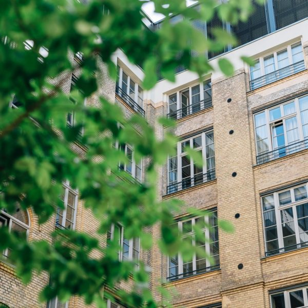 view looking through trees upward and tan brick apartment building with large windows